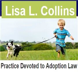 Lisa L. Collins, Attorney at Law ( Franklin,  TN )