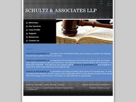 Schultz & Associates LLP ( Chesterfield,  MO )